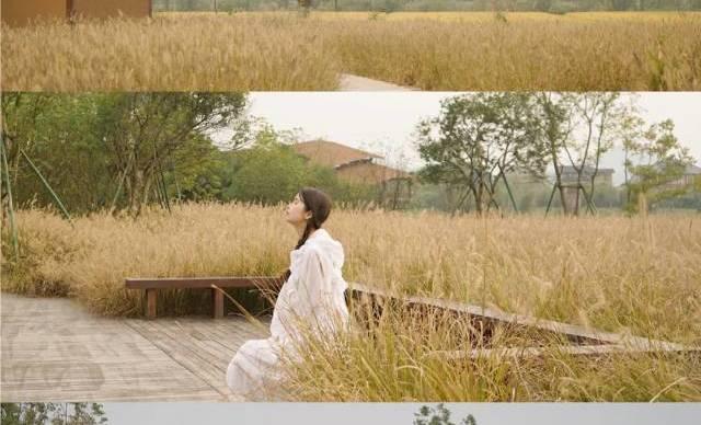 良渚公园,小草屋