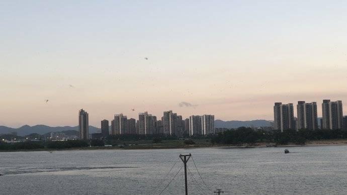 乌龙江大道